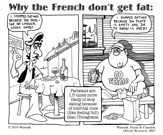 french vs usa obesity